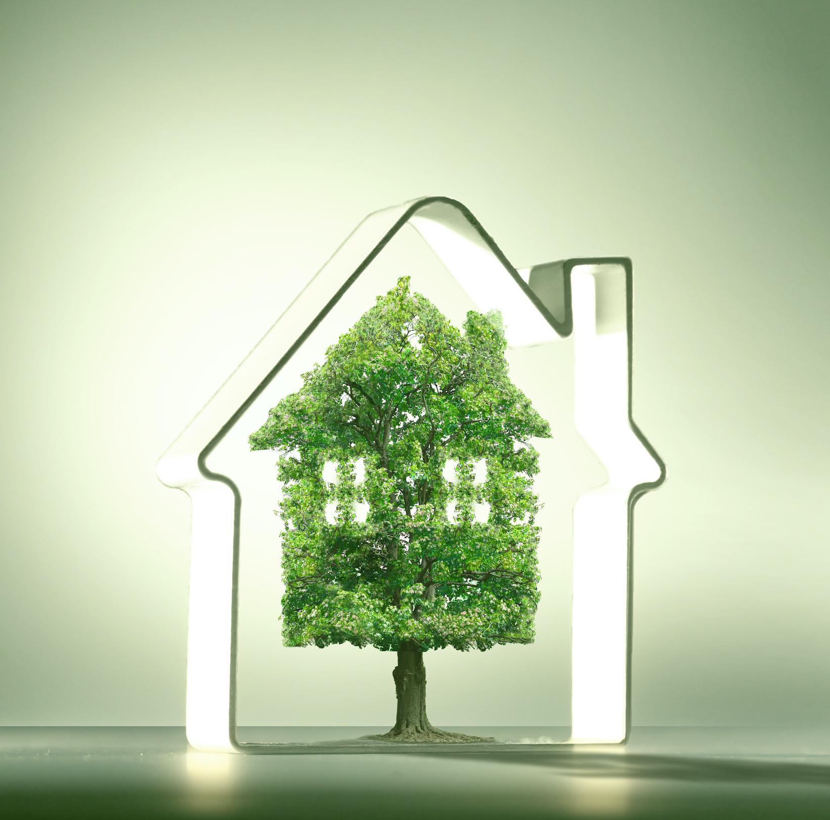 4 cechy nowoczesnego domu